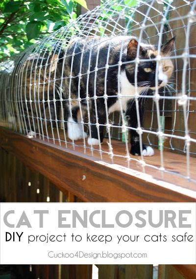 DIY outdoor cat enclosure- this woman is a genius and I look forward to building this when we buy a house!