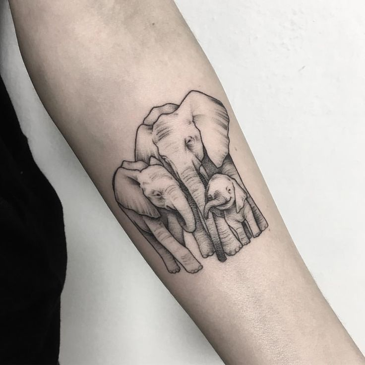 family #tattoos #tattoo #tattooart #familygoals #family #microtattoo #elephant #elephanttattoo #familytattoo #love