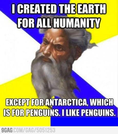 God Likes Penguins
