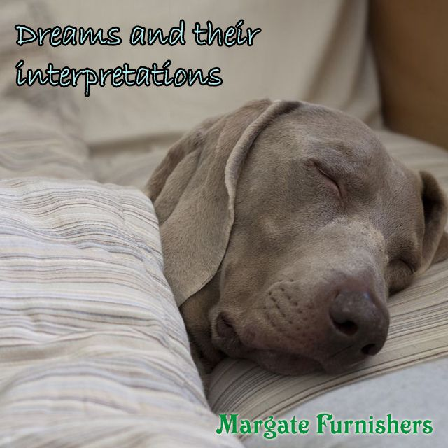 CLICK HERE TO LEARN ABOUT 12 common #dreams and interpretations #Margate #Furnisher #home http://bit.ly/1Qunols