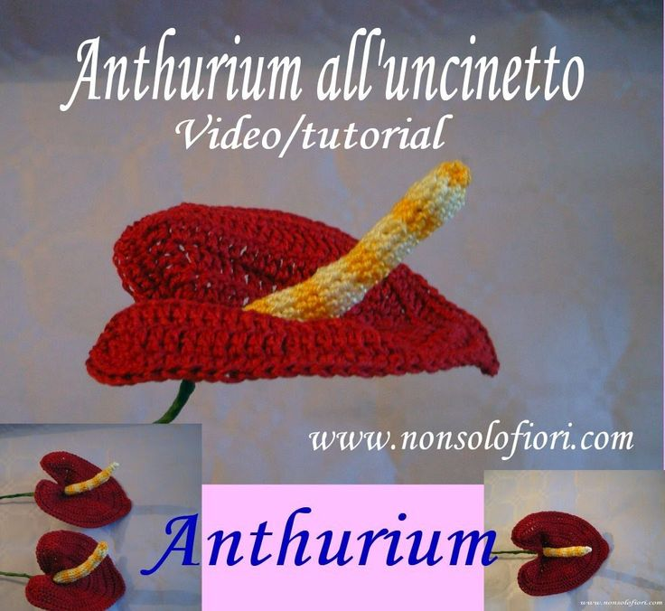Anthurium all'uncinetto. Se volete realizzarlo anche voi, ecco il mio video/tutorial Cliccate sul link: https://youtu.be/rlj_vHiB_ZQ www.nonsolofiori.com