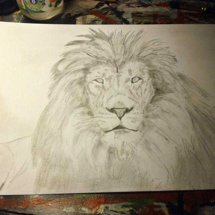 6th drawing a new lion #art #artist #animal #fineart  #lion #wildanimal #pencil #drawing