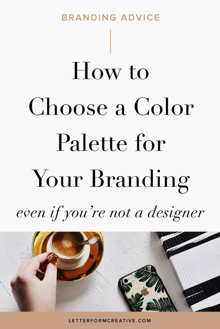 As a small business owner, you already have enough to stress about and your color palette shouldn't be one of them. Learn how to choose the right color Scheme for your brand identity. These helpful tips will provide Entrepreneurs the inspiration and guidance needed to choose a color palette in order to establish a style guide. Once you have a palette chosen use it for your logo, website, patterns, layouts, and graphics for a cohesive look.