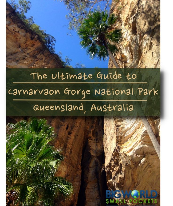 The Ultimate Guide to Carnarvon Gorge National Park, Queensland, Australia {Big World Small Pockets}