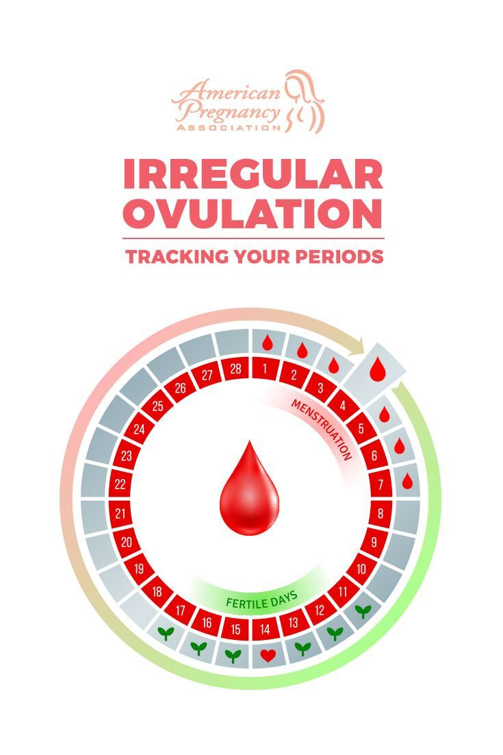 a3eba924d97b1eb26ea775440577e509 - How To Get Pregnant If You Have An Irregular Period