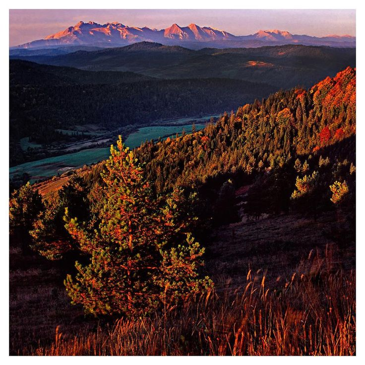 Belianske Tatry, Slovakia  #fujifilm #exklusive_shot #velvia50 #awesome_earthpix #discoverglobe #welivetoexplore #landscapelovers #landscapephotography #worldtravelscapes #tekelphoto #awesomenature #nikon #F70 #filmphotography #igs_europe #slovakia #cherryblossom #tree #autumn #ig_slovakia #leefilters
