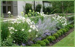 love this border design: Landscape Design, Residential Landscape, Gardens Landscape, Gardening Landscape, Landscape Gardens, Funky Landscape, Landscape Contractor, Landscape Ideas
