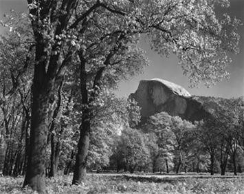 Yosemite National Park - Photography Classes