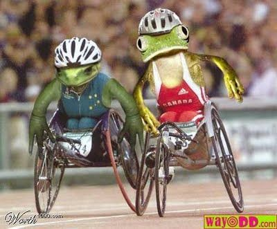 Special Olympics Frogs...funny frogs -
