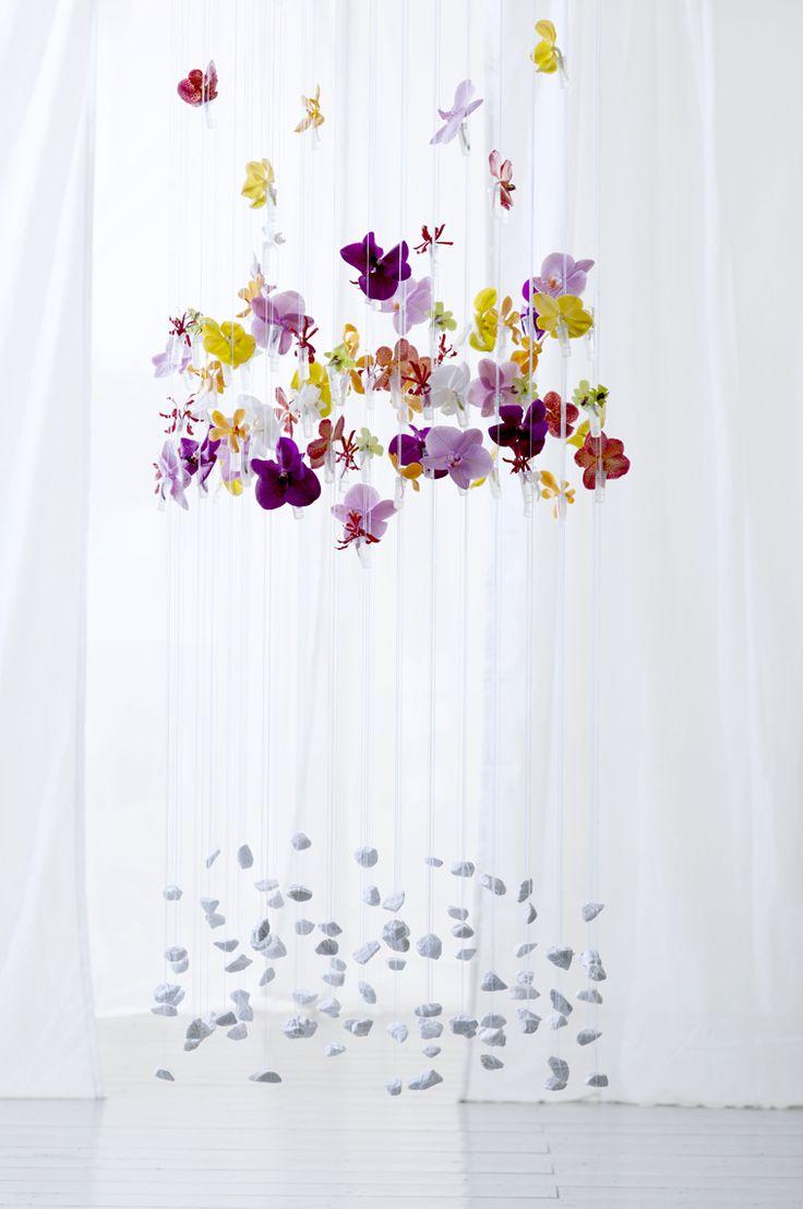 les 63 meilleures images propos de orchid e sur. Black Bedroom Furniture Sets. Home Design Ideas