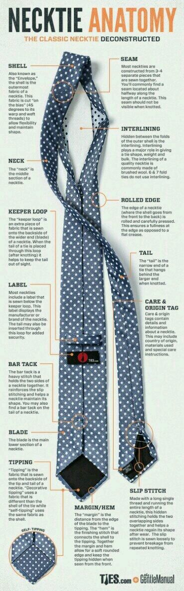 Anatomy of a tie | #Infographic repinned by @Piktochart | Create yours at www.piktochart.com