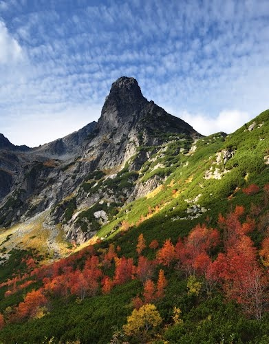 Jastrabia veža (Hawk Tower), High Tatras National Park, Slovakia. It is one of the nine national parks in Slovakia, and is situated in North Central Slovakia in the Tatra Mountains. The park is important for protecting a diverse variety of flora and fauna, with many endemic species, including the Tatra chamois.