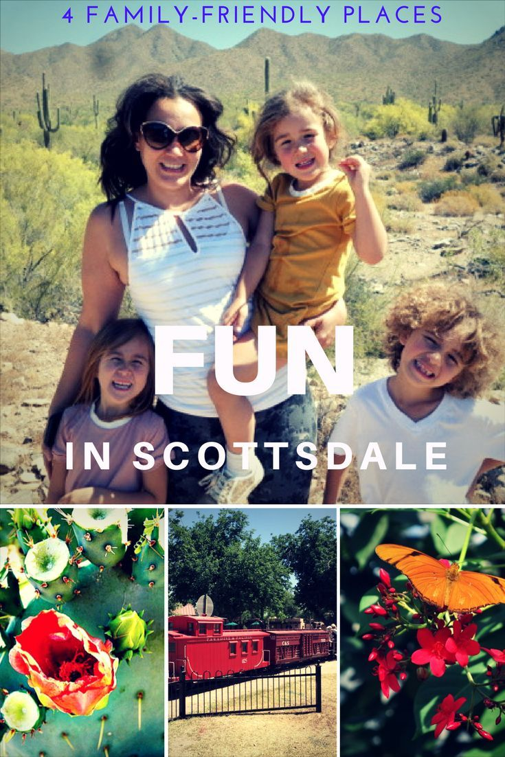 There are many things to do in and around Scottsdale, Arizona for residents and visitors of all ages and abilities. Here are a few tips on places that will have something for the whole family to enjoy. Featuring Kovach Family Nature Trail in the McDowell Sonoran Preserve, McCormick-Stillman Railroad Park, Butterfly Wonderland, and Desert Botanical Garden - Southwest USA