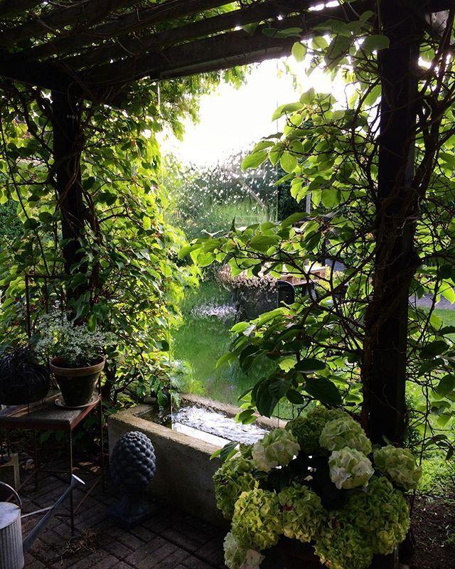 Säger god natt med en avkopplande sommarbild på vattenfallet. / god night from me and this picture from my garden. #waterfall #vattenfall #garden #trädgård #gardendesign #trädgårdsdesign #tradgardsdetaljer #pergola #trädgårdsrum #hortensia #godastundertokigaideer