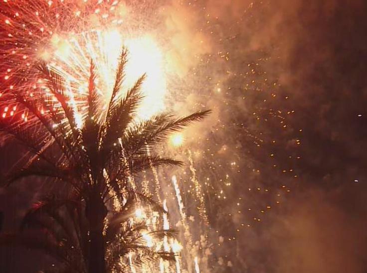 firework_7_by_femke1996-d5a4em5.jpg (987×735)