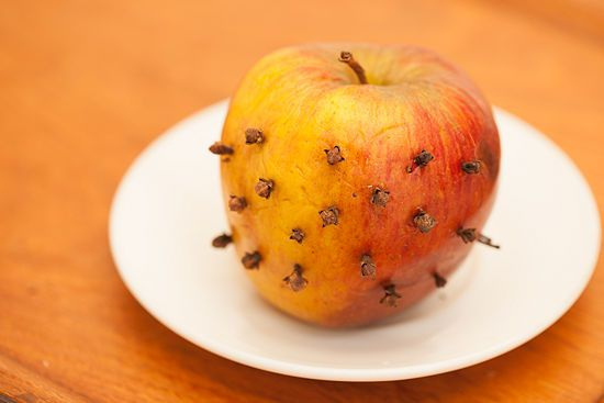 How to Get Rid of House Flies with Cloves: Take a sweet, ripe apple, randomly poke 20-30 cloves in the the apple, place on a plate and good bye flies. Apparently they hate the subtle smell of the cloves :)