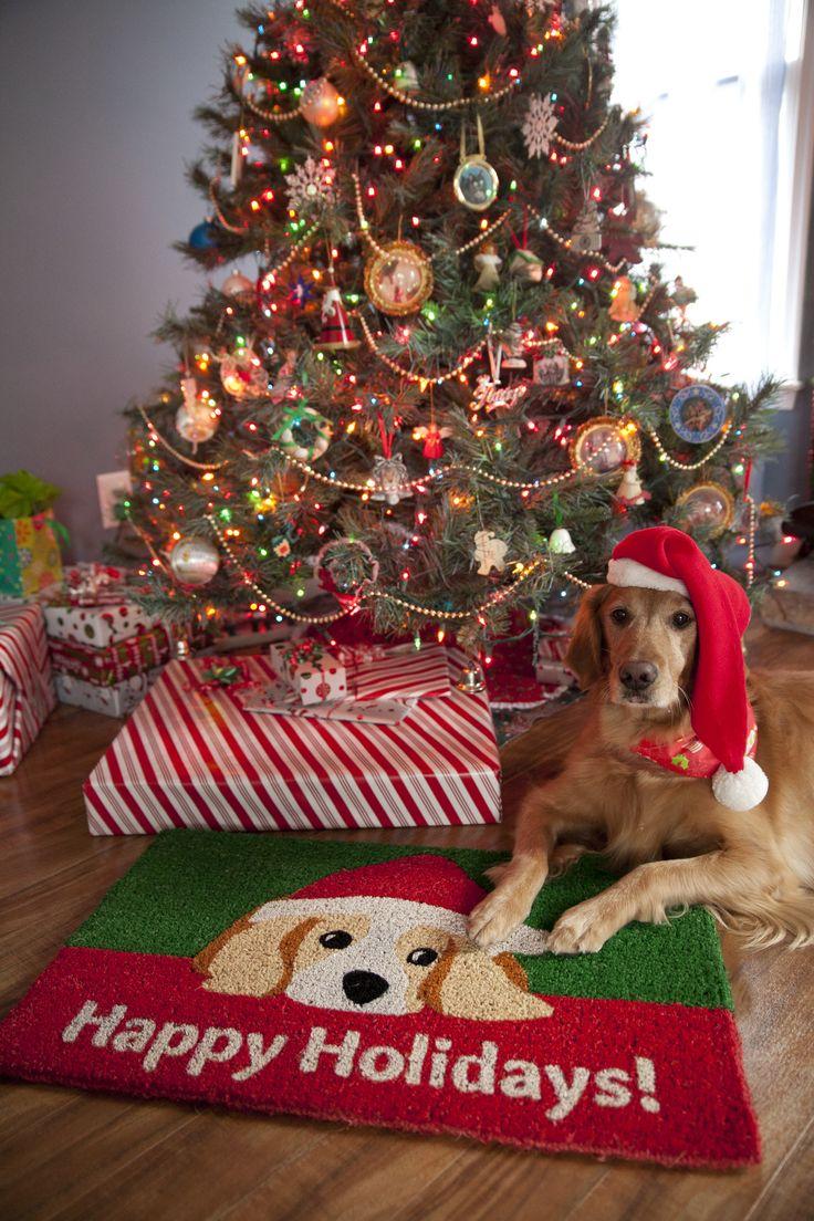 Entryways Handmade Dog Lovers Holiday Doormat | Wayfair - Happy Holidays door mat - red and green - Christmas decoration
