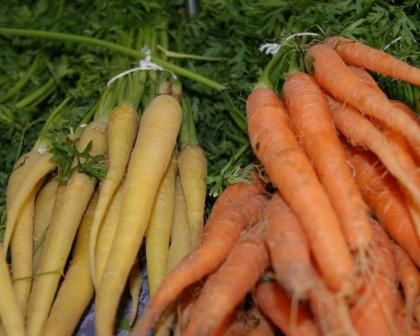 Organic Heirloom Carrots handmade by me and shared with our friends at the markets...