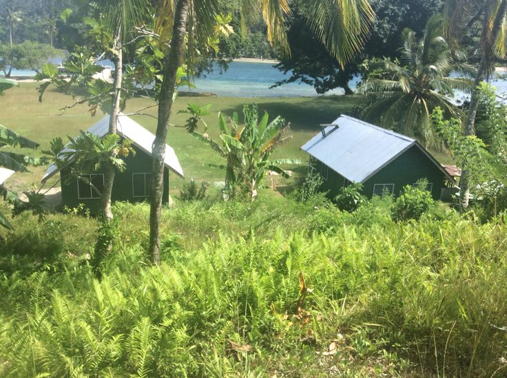 Cricket Pitch. Kwato Island.