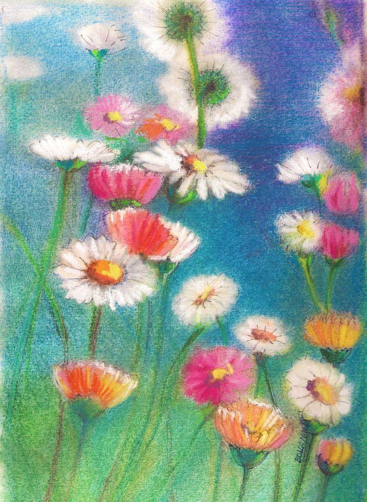Daisy - Százszorszép - pastell - 21 x 30 cm - by Márta Bolla - Hungary
