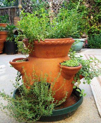 Growing Herbs in a Strawberry Pot - Vegetable Gardener