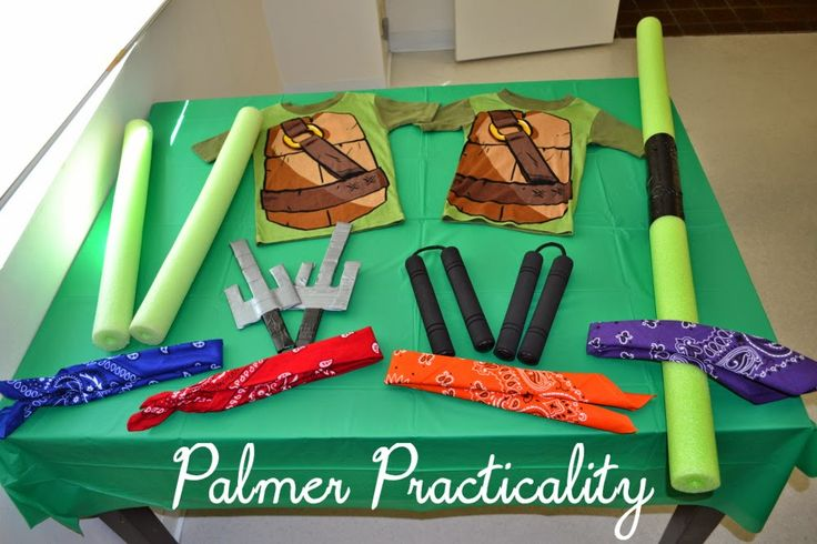 Palmer Practicality: Homemade Teenage Mutant Ninja Turtle Costumes