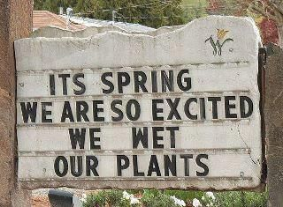 spring laughs http://www.wildlandnursery.com 's sign.Laugh, Shops Signs, Funny Signs, Quote, Flower Shops, Gardens Signs, Plants, Spring, Gardens Humor