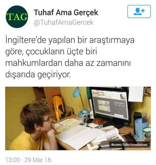 (6) Twitter