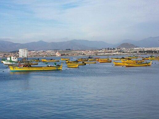 Caleta de pescadores, Coquimbo, Chile