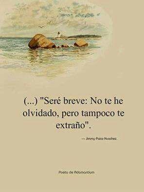 """""""Seré Breve...""""*"""