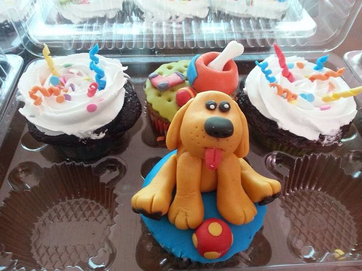 Cupcakes puppy