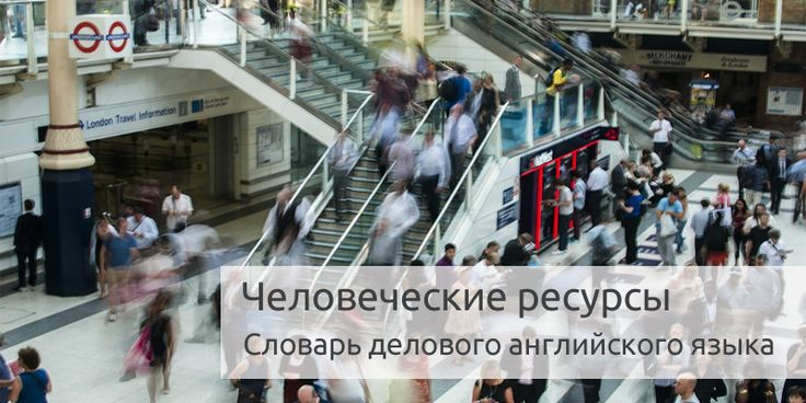 Человеческие ресурсы (Human Resources) | Словарь делового английского языка
