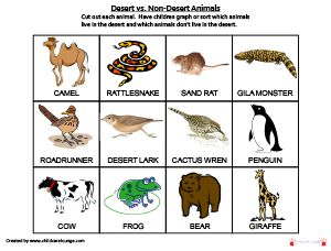 Desert vs. Non-Desert Animals (for Preschool Desert or Wild West Theme): Cut out each animal. Have children graph or sort which animals live in the desert and which animals don't live in the desert.