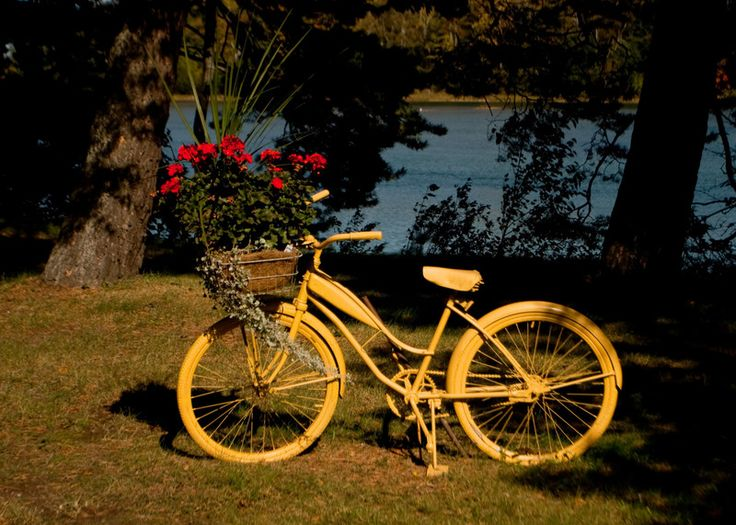 : Unusual Containers, Bicycle Planters, Beautiful Bicycles, Bicycle Ideas, Bicis Con