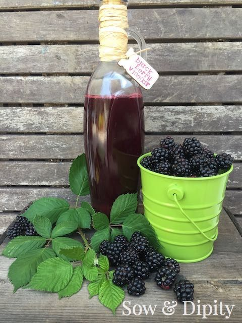 A fresh summer salad isn't complete without a delicious dressing, like a red wine blackberry vinaigrette. Pick blackberries from your garden or buy from the store and follow Sow & Dipity's recipe to make your own homemade salad dressing.