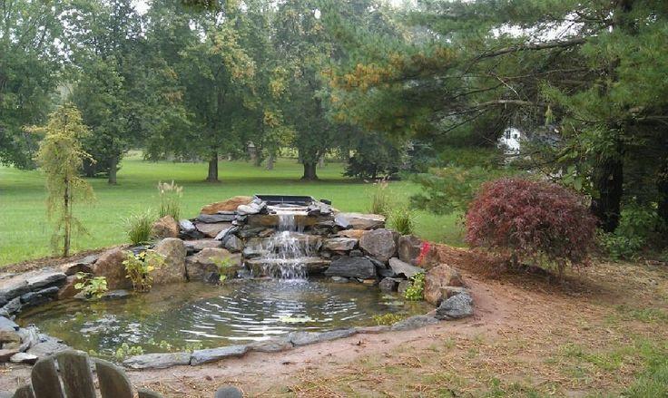 backyard coy pond - Google Search