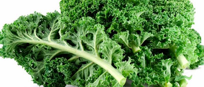 Kale is inexpensive and easy to grow, it is even considered as one of the simplest crops for local farmers to grow.