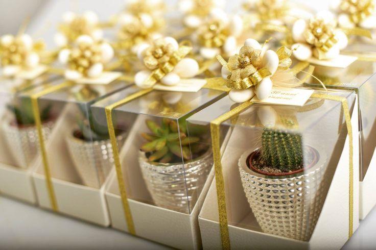 Bomboniere confezionate da Zanolli per un Anniversario di Matrimonio! I confetti sono in color oro, la bomboniera è una Pianta Grassa (eccole: http://bit.ly/1U9eA3J ) Per info non esitate a contattarci!