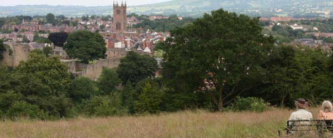 Whitcliffe Common by Ludlow - geology, wildlife and beautiful views and walking