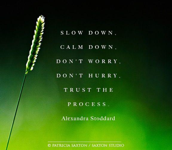Slow Process Quotes. QuotesGram