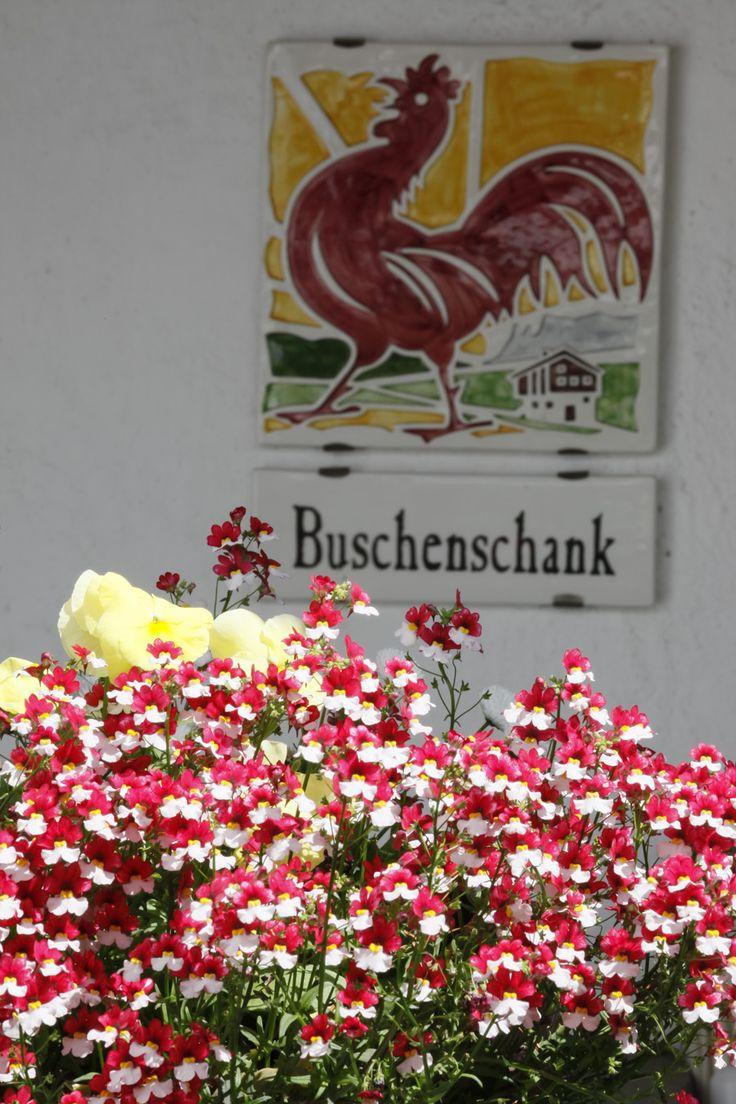 Wo lässt es sich in Südtirol noch original Törggelen? Bei den Roter Hahn Buschenschänken gibt es Wein und Speisen vom eigenen Hof.