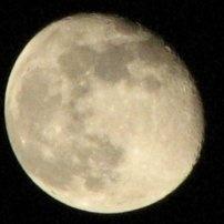 Incanti di Luna - escursione serale con luna piena - Monte Civita (Ischitella)