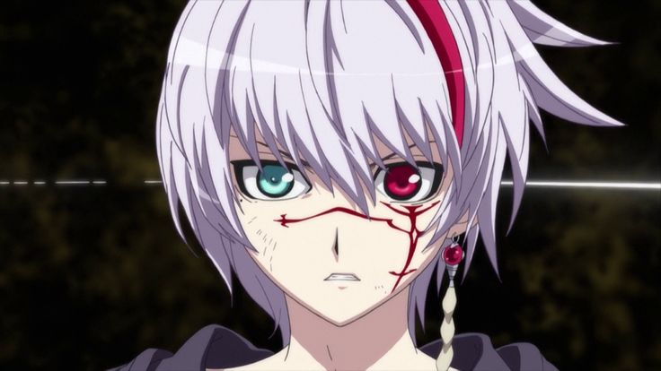I didn't watch this anime cause of the weird horrible theme. But I liked the way the main character looks (I'm a huge sucker for guys with white hair) So I was content with just ogling at pictures.