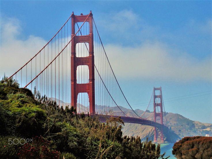 The Bridge - null