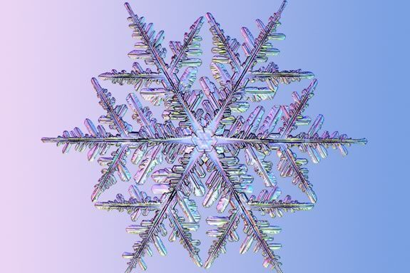 Marvel at the mathematical beauty of a snowflake.