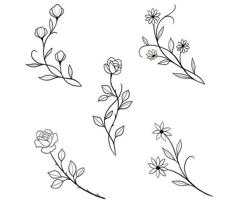 участке мини рисунки цветок полезными считаются