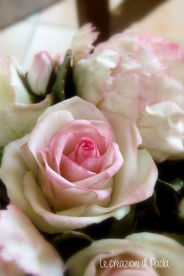 Rosa e peonia