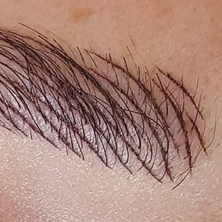 Microblading eyebrows