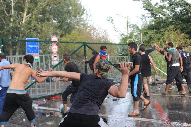 18+ fotók! Áttörték a kerítést Horgos 2-n a migránsok, a rendőrök megállították őket