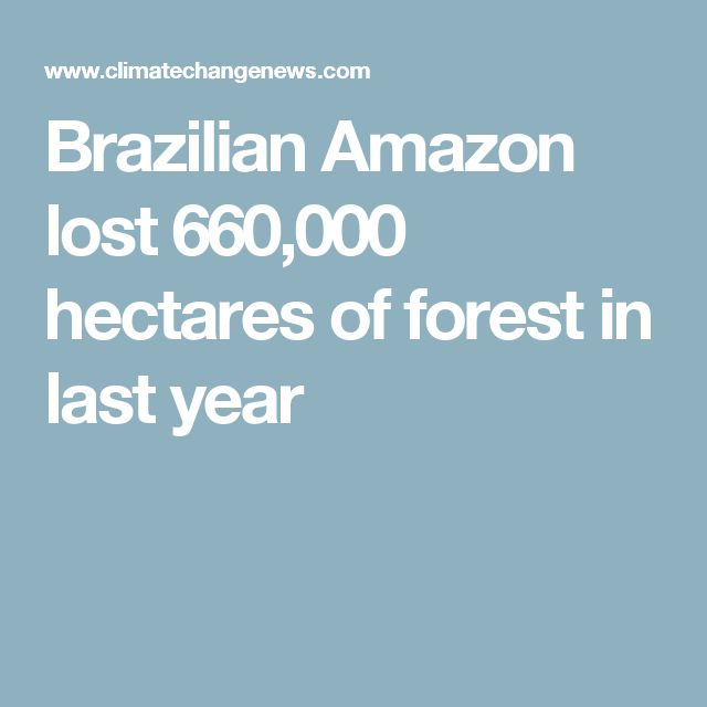 Brazilian Amazon lost 660,000 hectares of forest in last year - this is a rapidly deteriorating situation. Given its importance to the World any further loss of magnitude will see widespread ramifications for us all! We must, collectively, act now!